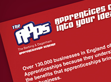 Apprentices Schemes